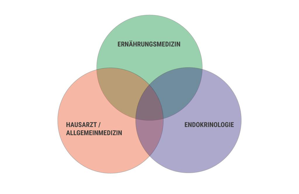 Arzt Praxis Gallwitz für Ernährungsmedizin: Diagramm Zusammenarbeit der medizinischen Fachdisziplinen bei Hashimoto
